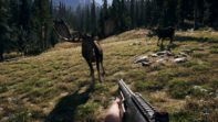 Far Cry 5 Animals