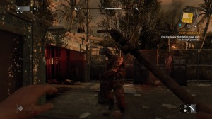 Dying Light_20150130143553